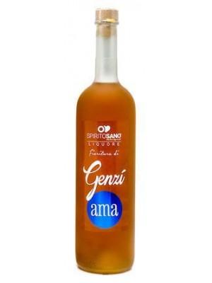 GENZI_AMA  SPIRITO SANO